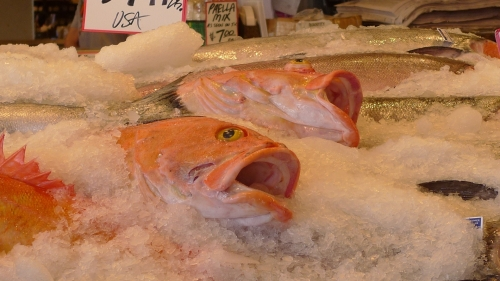 FISH HEADS SEATTLE