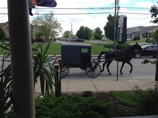 Amish carriage.