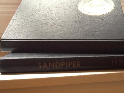 Sandpiper%202[1]