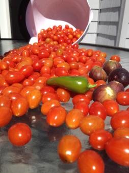 bob tomato