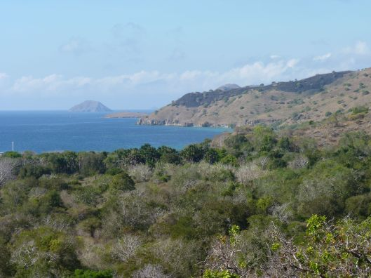Komodo Island walk