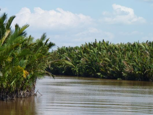 The Sekonyer River. Kalimantan.
