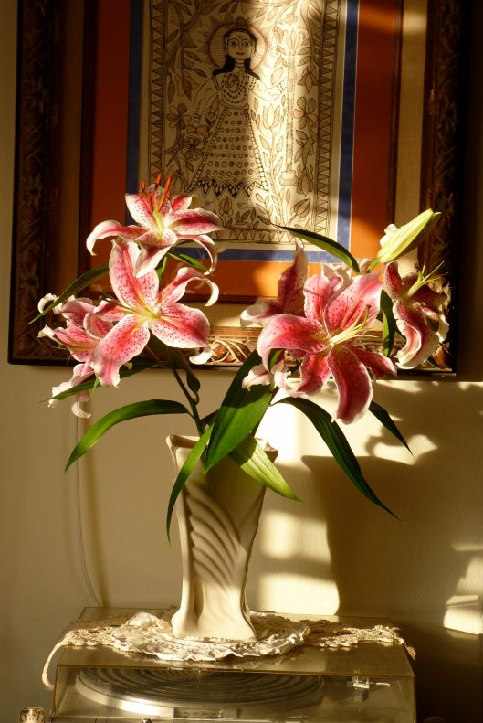 Lilies late afternoon