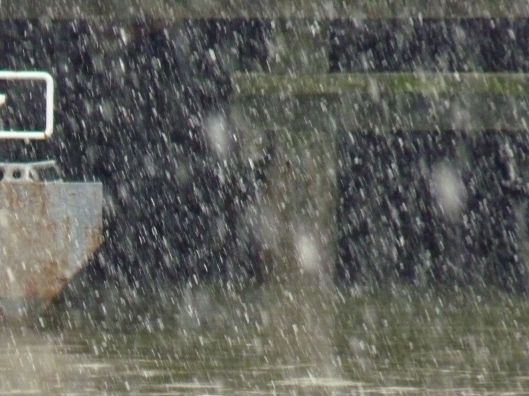 snow Chelsea Piers December 30, 2012-6
