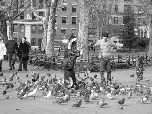 pigeon man 3