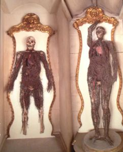 The Anatomical Machines