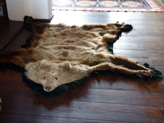 Bear rug. Bran Castle