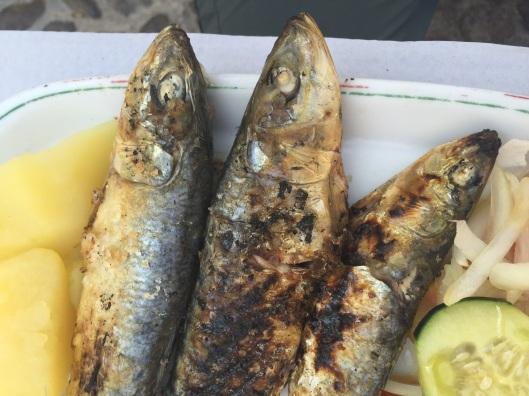 Sardines in Coimbra.