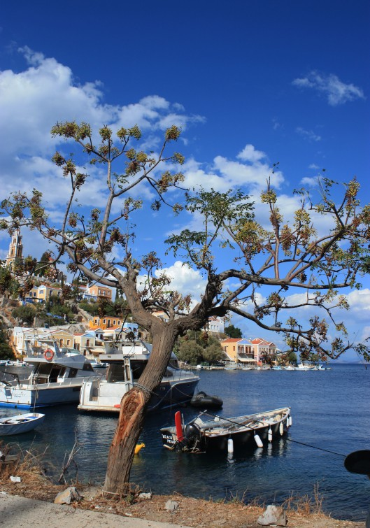 view-of-symi-1
